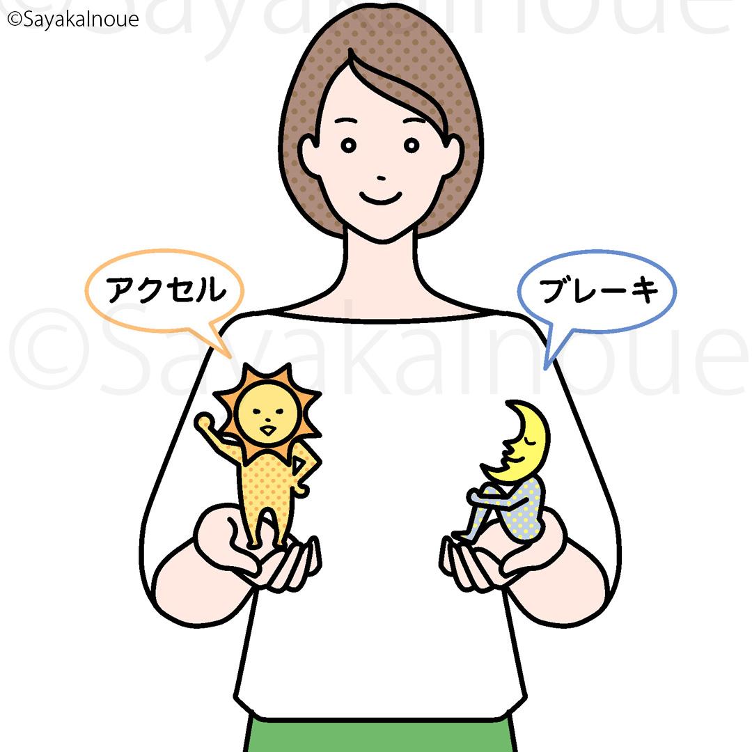 Characters autonomic nerves