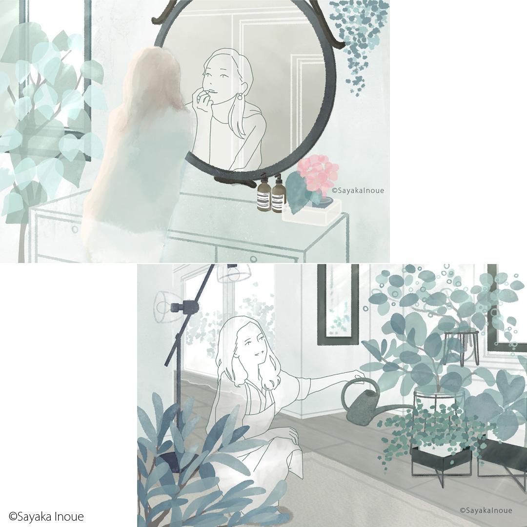 house plants-2